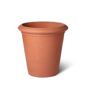 Terracotta Camelia Pot